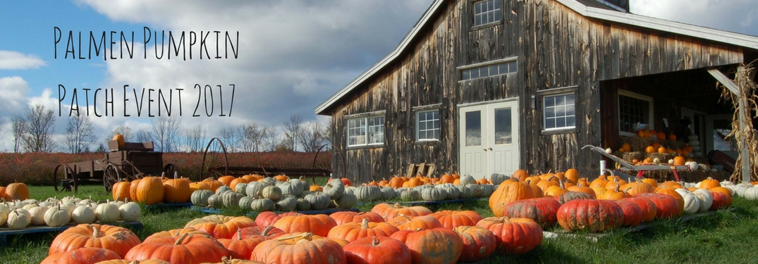 Check out the Palmen Pumpkin Patch this fall!