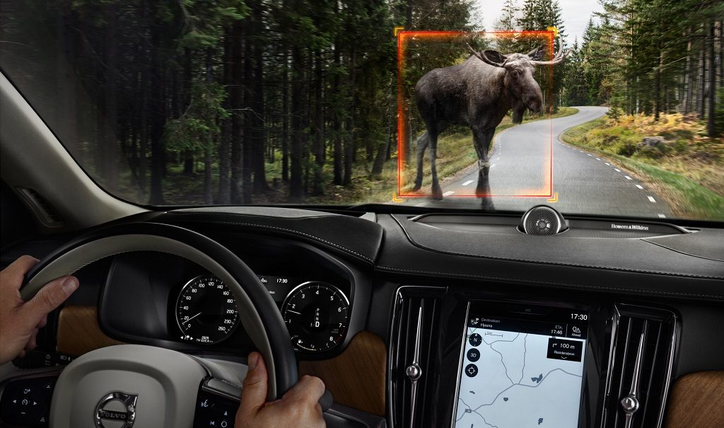 Volvo Large Animal Detection