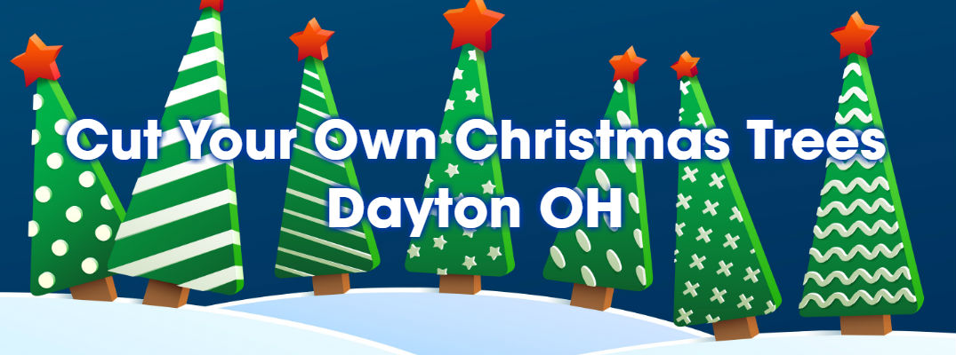 Cut Your Own Christmas Trees Dayton OH