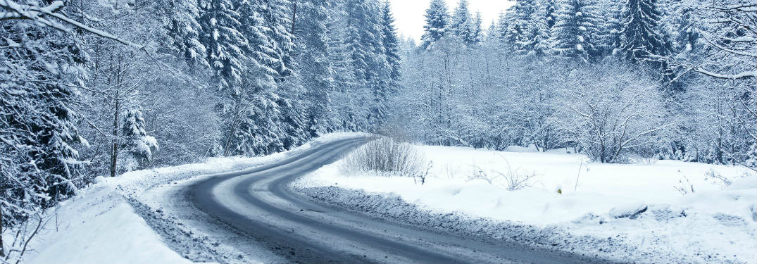 winter-back-country-forest-road_b