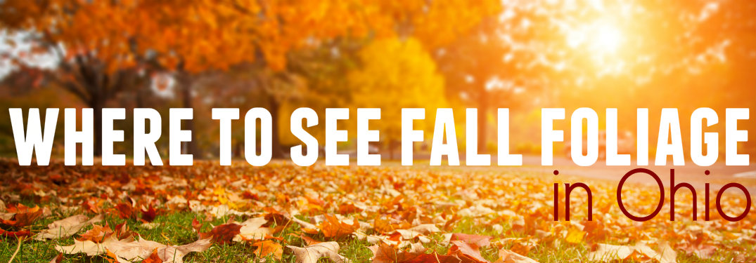 Where to see changing leaves in Ohio