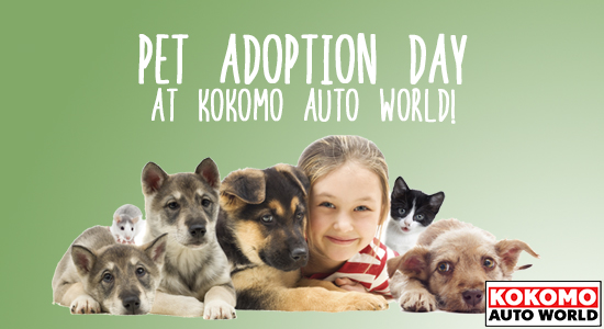 7-22-2015-AdoptionEvent