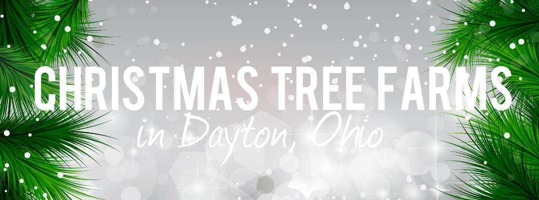 Christmas Tree Farms Dayton Ohio