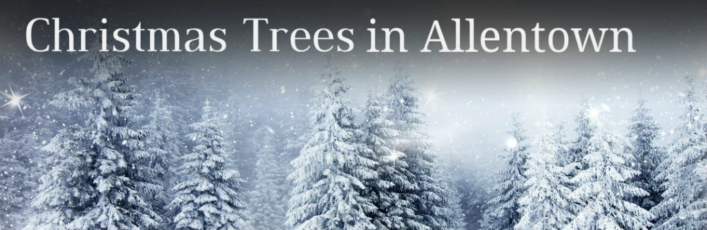 Get directions, reviews and information for Christmas Tree Shop in Allentown, PA.8/10(3).