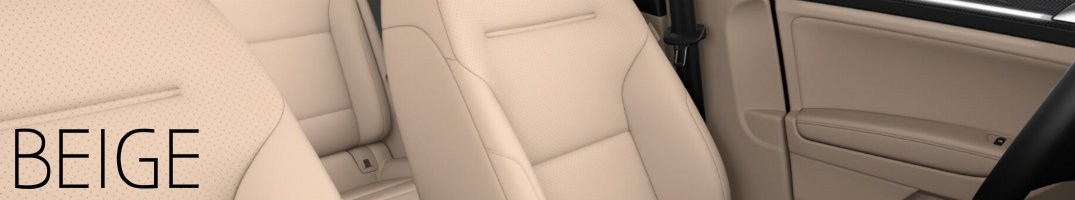 Beige interior 2017 Golf Alltrack
