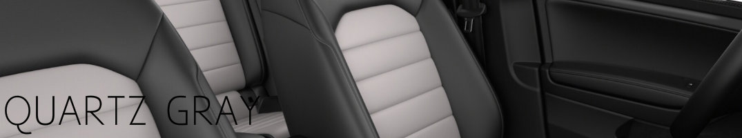 Quartz Gray 2017 Golf Alltrack Interior