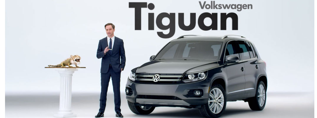 What Does Tiguan Mean >> Tiguan Meaning Related Keywords Suggestions Tiguan Meaning Long