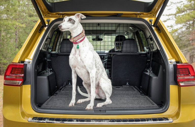 2018 vw atlas weekend edition pet divider cargo area