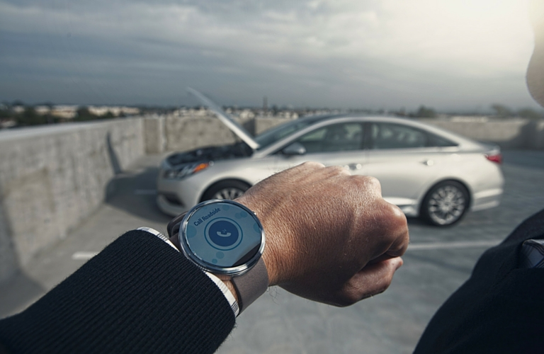What is the difference between Hyundai HomeLink and Blue Link?