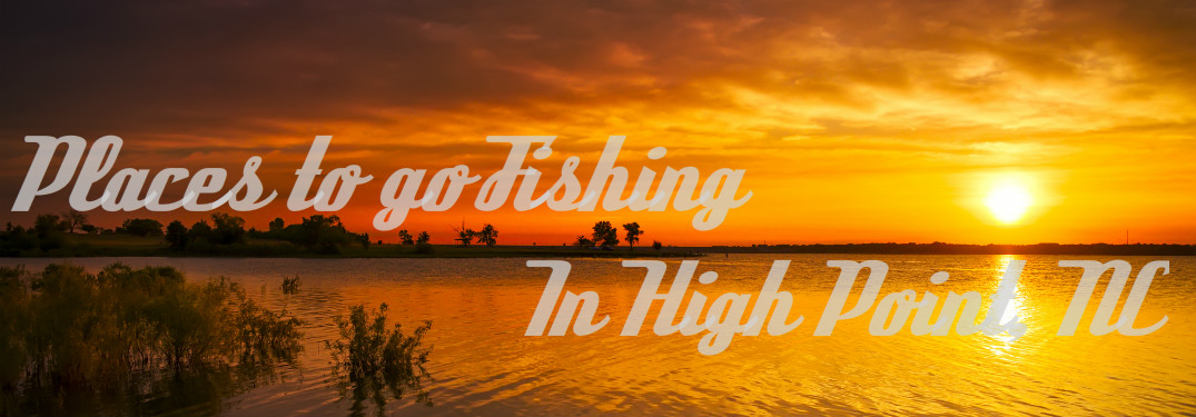 places to go fishing in high point