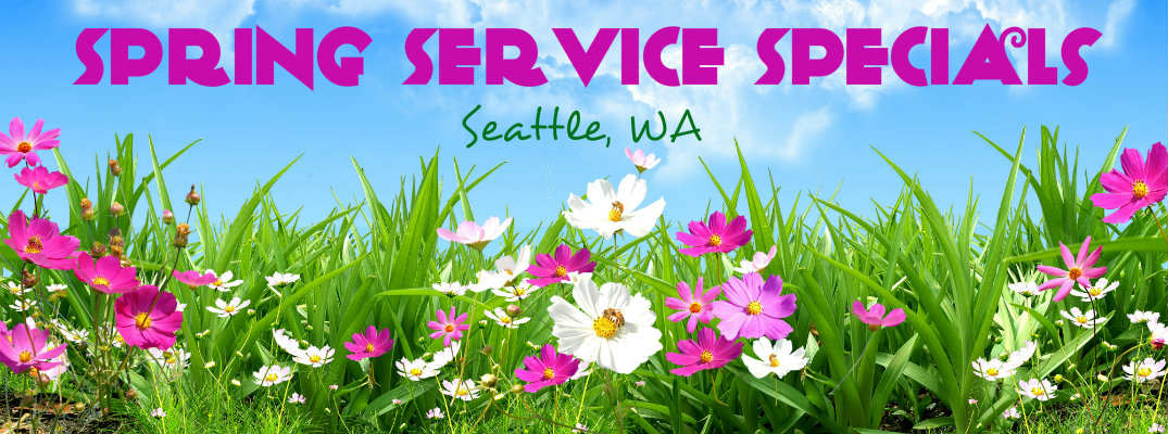 Spring Service Specials Seattle
