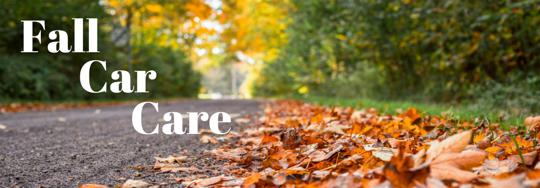 Fall Car Care text over an image with a road and fall leaves