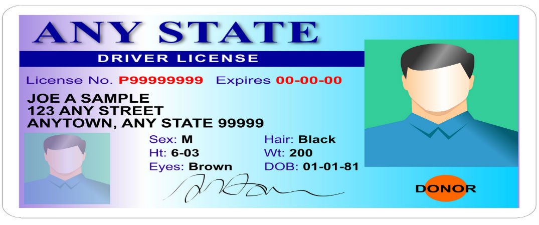 How To Read Your Driver S License Number