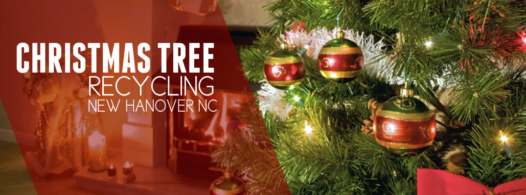 Christmas Tree Recycling Uttlesford : Local events archives mcneill nissan