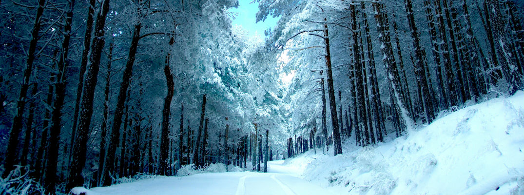pine river dating site Pine river weather forecast from accuweathercom extended forecast in pine river, mn 56474 for up to 25 days includes high temperature, realfeel and chance of precipitation.
