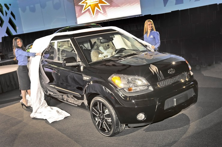 Best Kia Soul Hamster Pictures 2010 2016