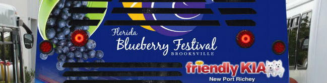 Brooksville Blueberry Festival 2020.2017 Florida Blueberry Festival Music Performers And Event