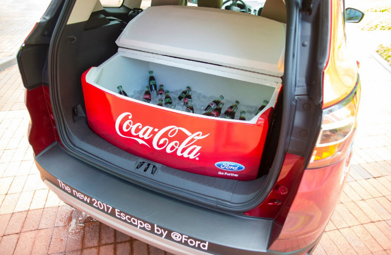 Trunk Cooler with Coca Cola inside