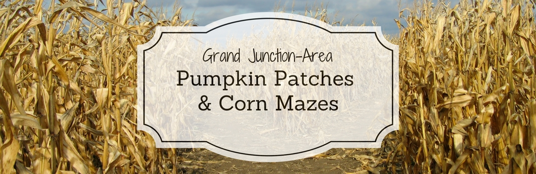 Pumpkin Patches and Corn Mazes near Grand Junction CO