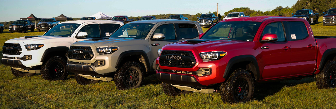2016 toyota tacoma color options. Black Bedroom Furniture Sets. Home Design Ideas