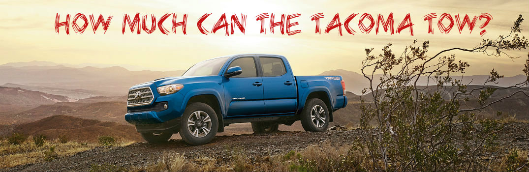 does the toyota tacoma come with leather seats. Black Bedroom Furniture Sets. Home Design Ideas