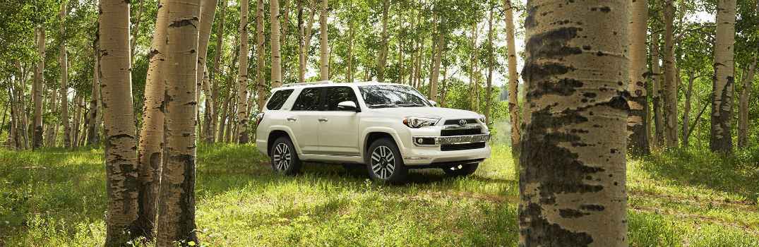 how much can the 2016 toyota 4runner tow. Black Bedroom Furniture Sets. Home Design Ideas
