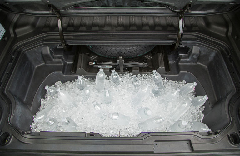 In-Bed Trunk filled with Ice