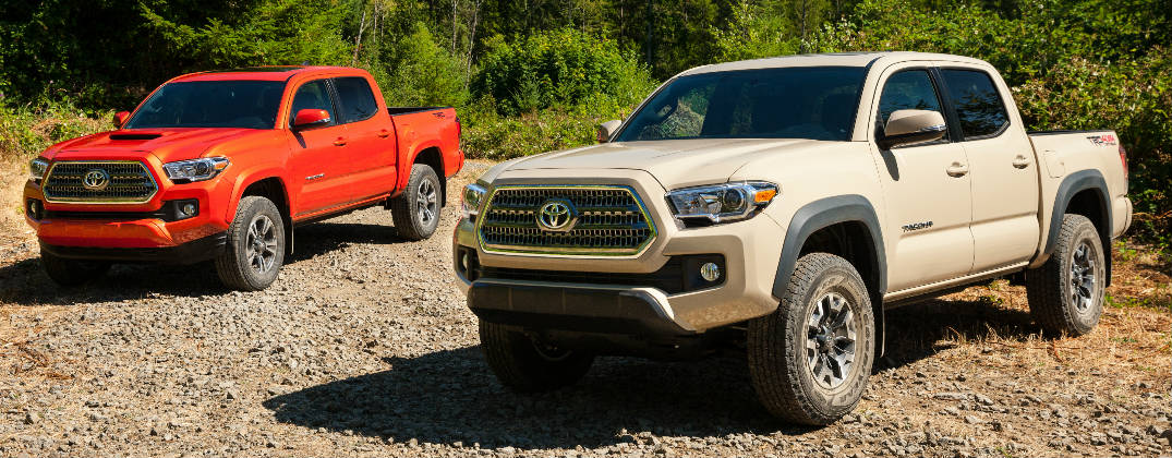 What Are the Color Options for the 2016 Toyota Tacoma?