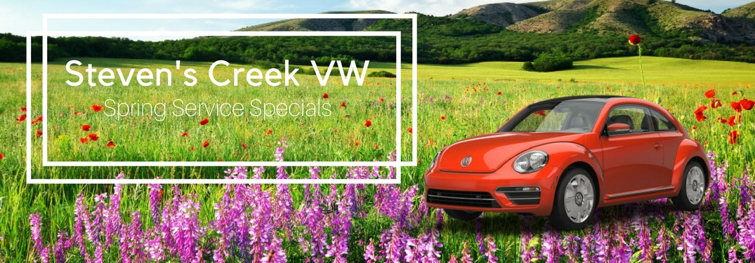stevens creek volkswagen service coupons