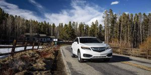 2017-rdx-exterior-in-white-diamond-pearl-tall-trees-1