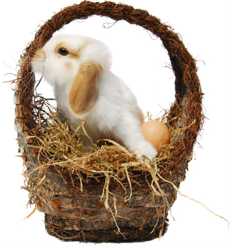 What will the Easter Bunny leave in your basket?