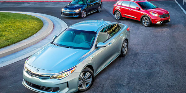 Three 2017 Kia Optima Hyrbids in Red Blue and Silver Parked in Circular Driveway