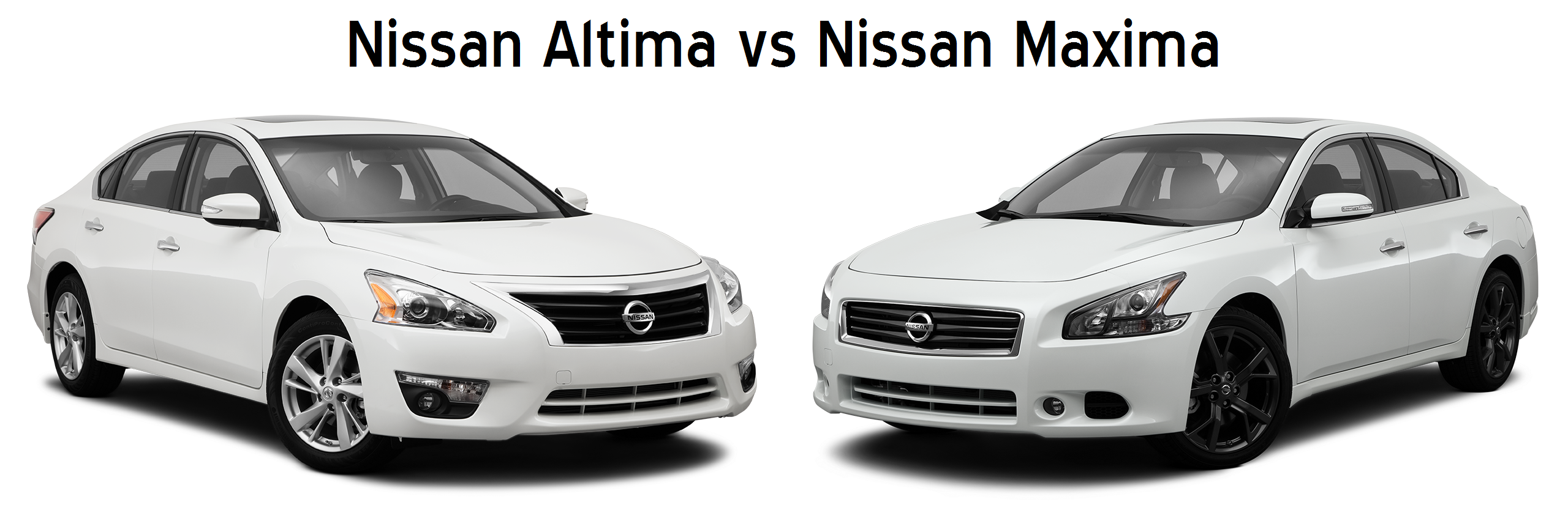 nissan altima vs nissan maxima difference