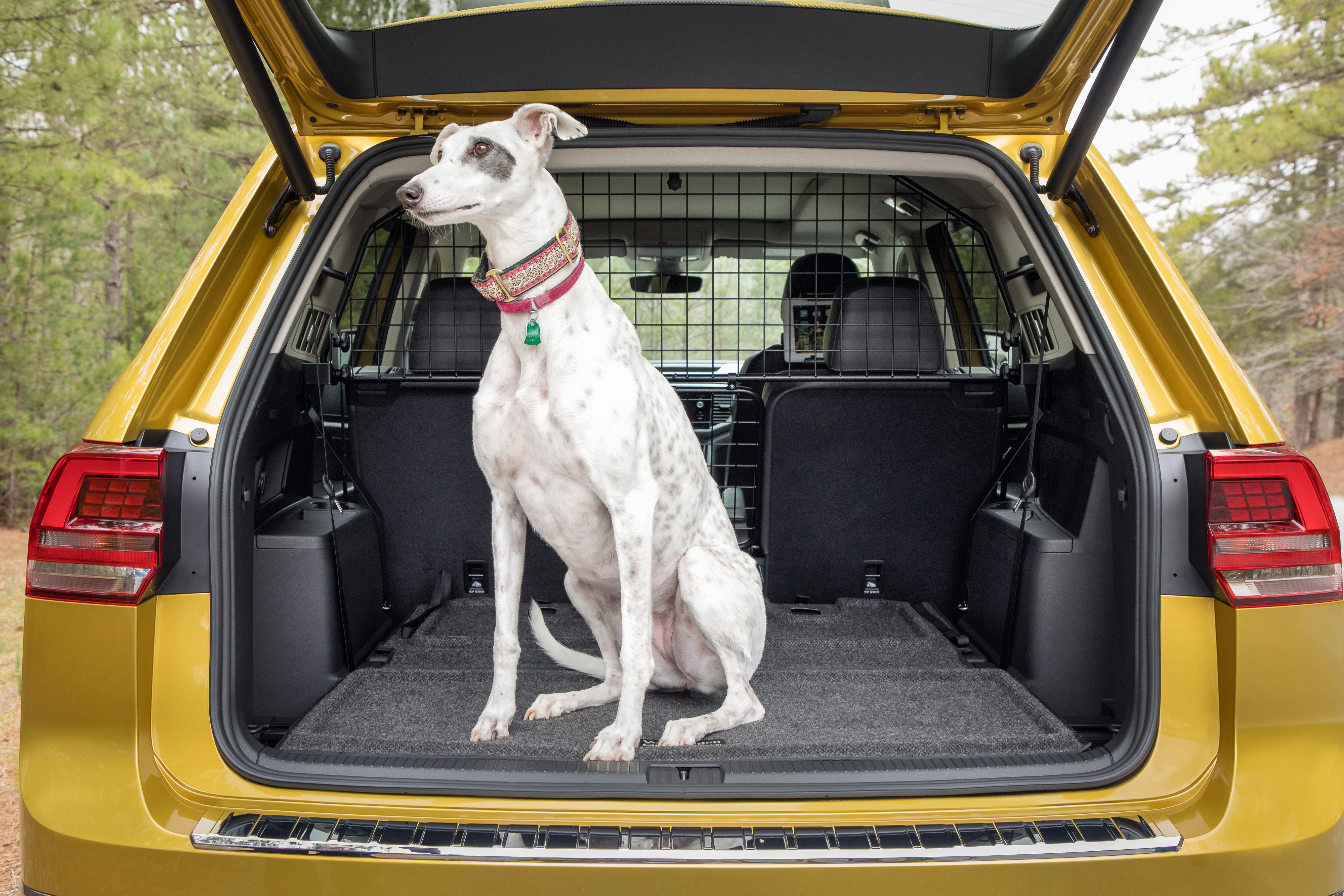 Car Seat Cover For Dogs India
