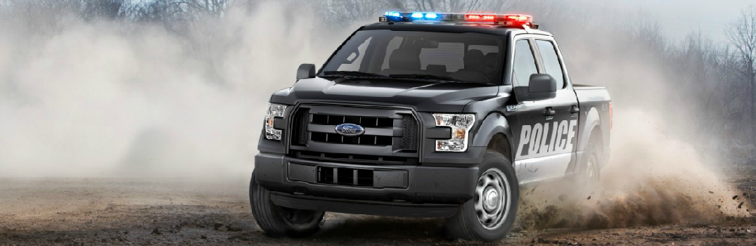 2016 Ford F-150 Special Service Vehicle Exterior