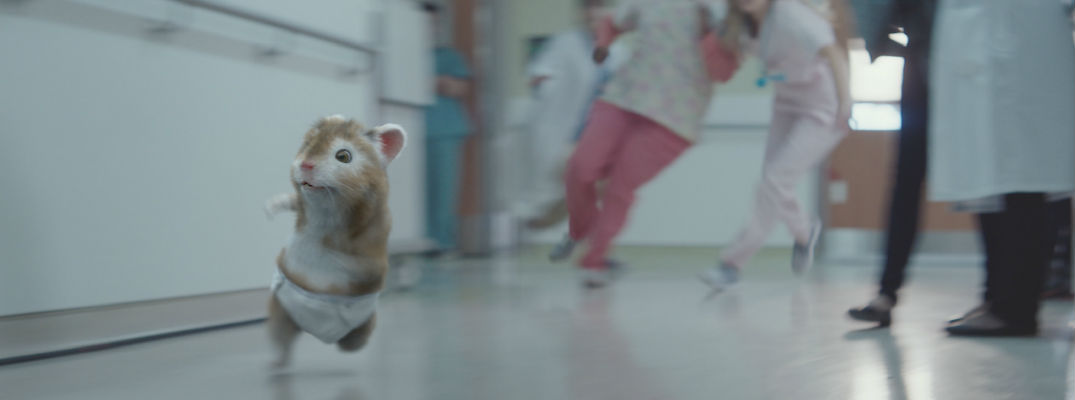 Turbocharged Kia Baby Hamster Escaping from Nurses and Doctors in Maternity Ward