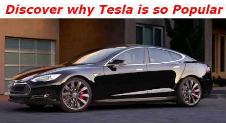 discover why tesla is so popular