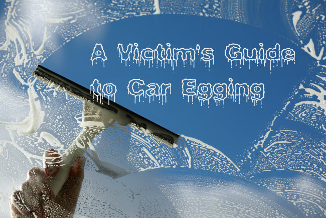 How to Clean Egg Off Car
