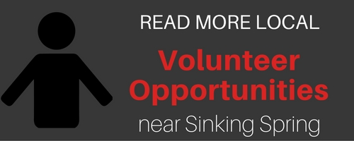 READ MORE volunteer opportunities_b (1)