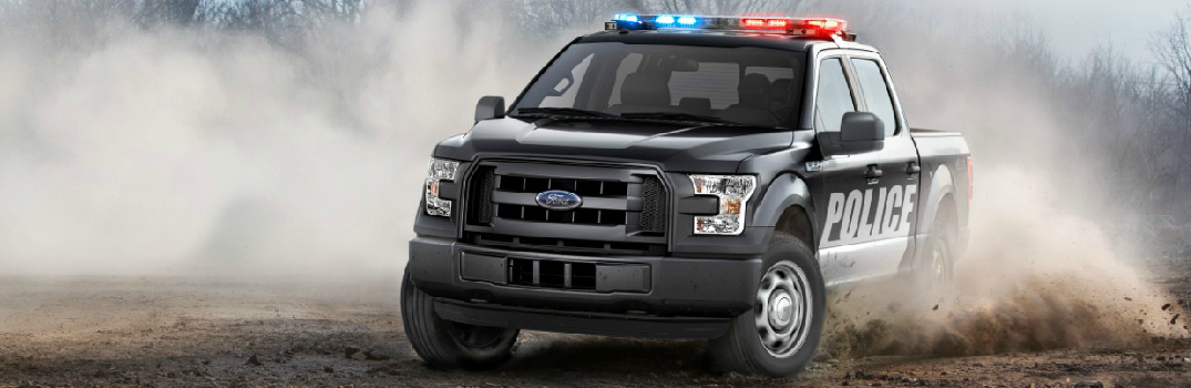 Grand Ledge Ford Lincoln Ford Dealership In Grand Ledge Mi >> 2016 Ford F-150 Special Service Vehicle