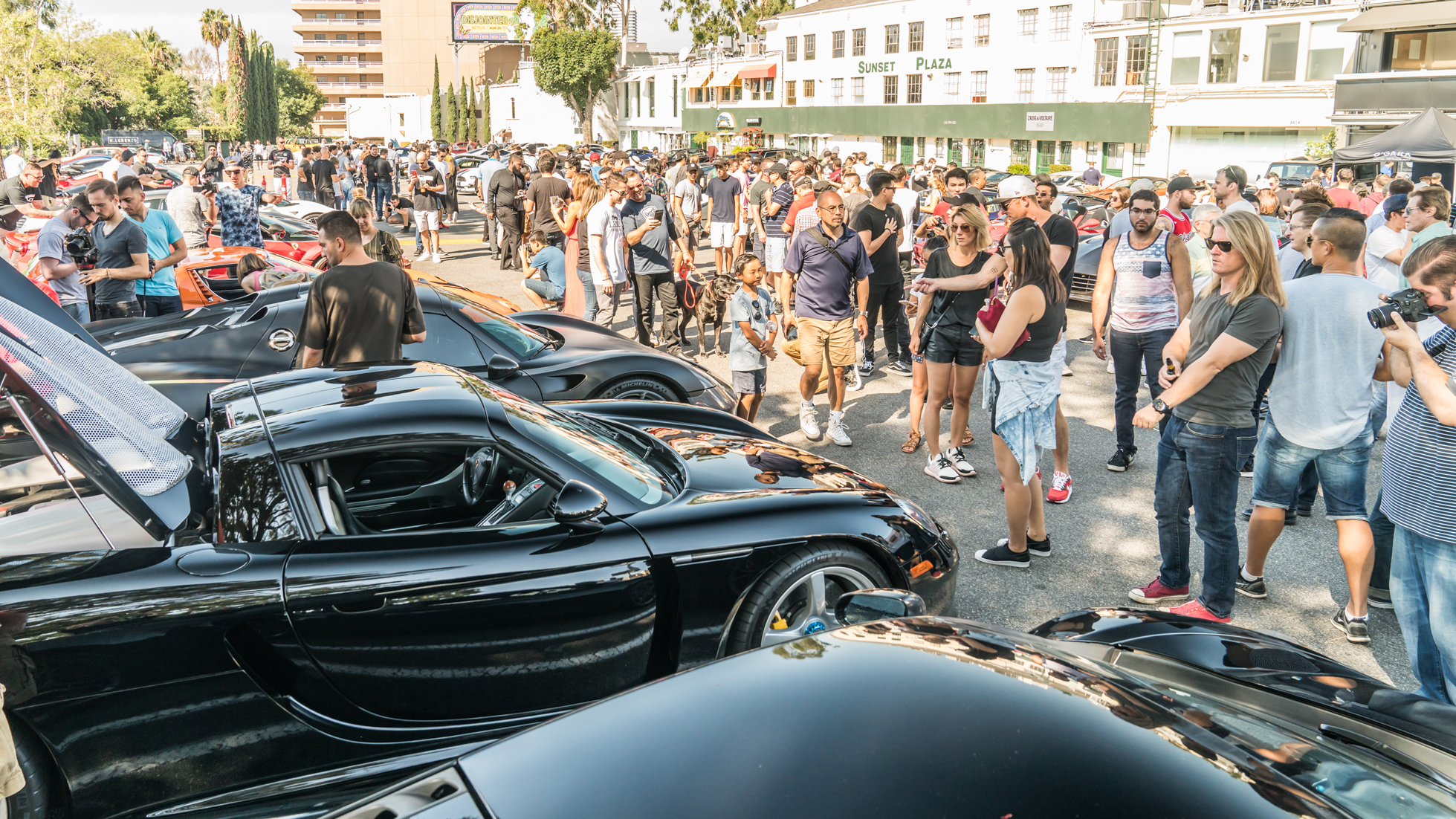 SUNSET GT - CARS AND COFFEE REINVENTED - SEPTEMBER