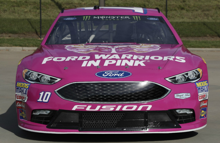 No 10 Ford Warriors in Pink Race Car and Warrior Symbol_o