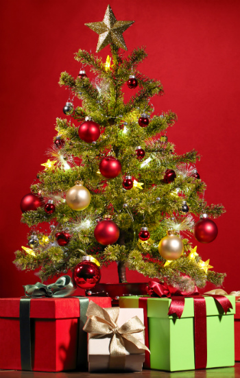 Celebrate 2016 Christmas with Your Family in Duval County FL