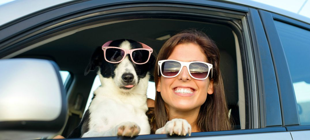 female driver with pet dog