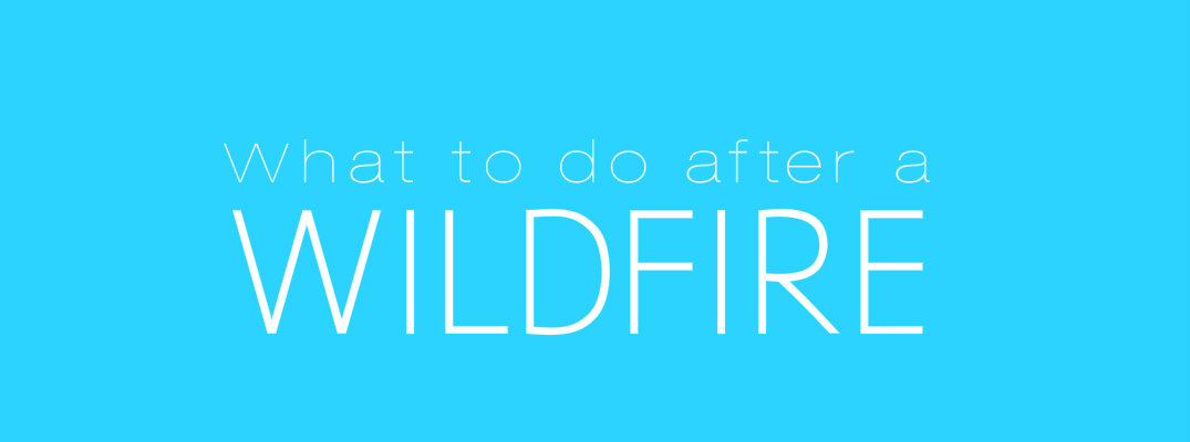 3 things to do when returning home after a wildfire