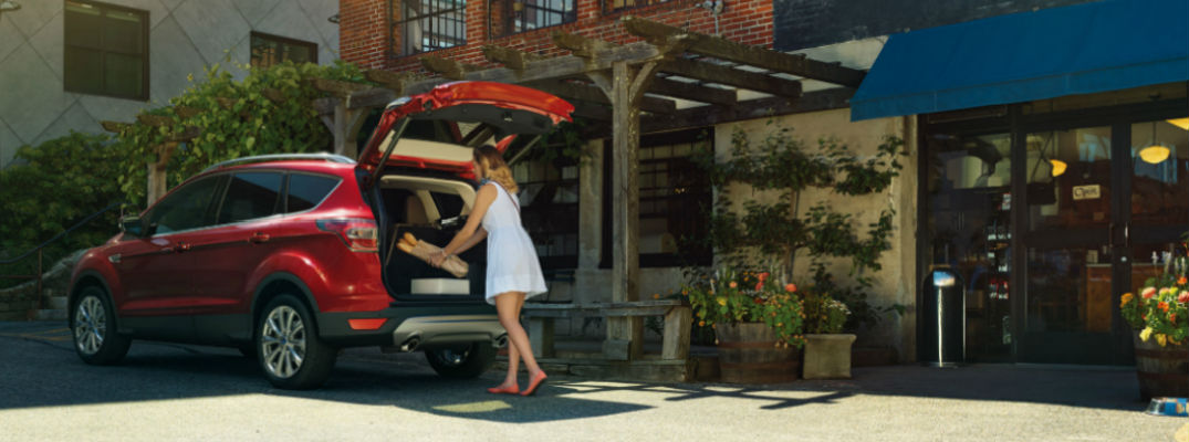 Cargo Space and Interior Passenger Seating 2017 Ford Escape