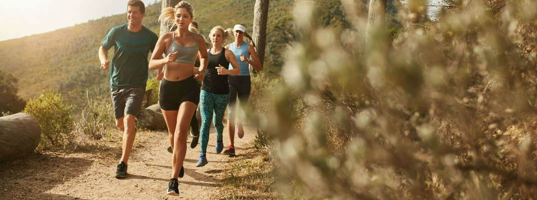 Group of Runners on Wooded, Dirt Running Trail