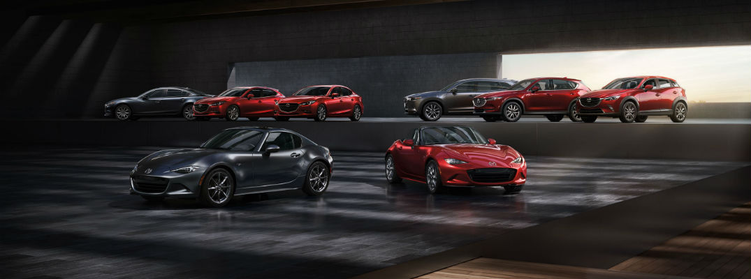 A photo of the entire Mazda lineup in a photo studio.