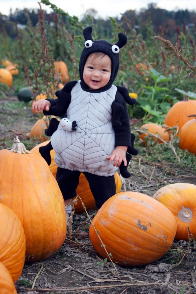 child in spider costume in pumpkin patch