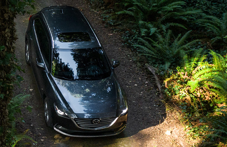 2020 Mazda CX-9 on trail in woods